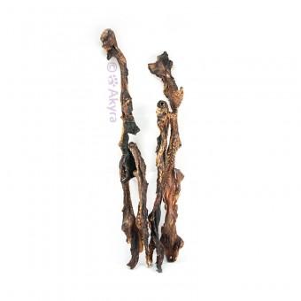 Akyra Runderlippen 30-40cm