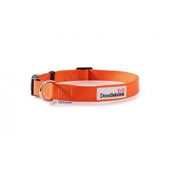 Doodlebone Bold Hondenhalsband Oranje
