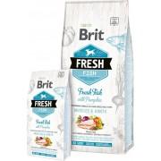 Brit Fresh Vis met Pompoen Adult Large