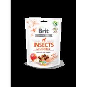 Brit Crunchy Snack Insect & Kalkoen