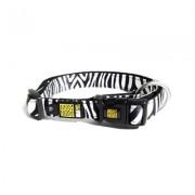 Max & Molly Zebra SmartID Halsband
